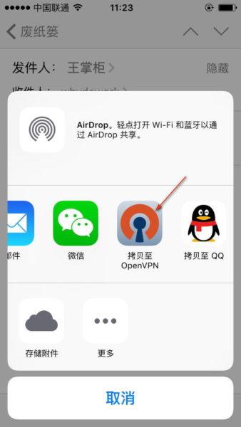 iphone ovpn copy
